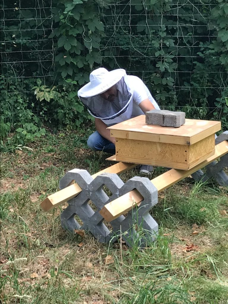 Bienenstock aufgestellt – Bienenvolk angesiedelt